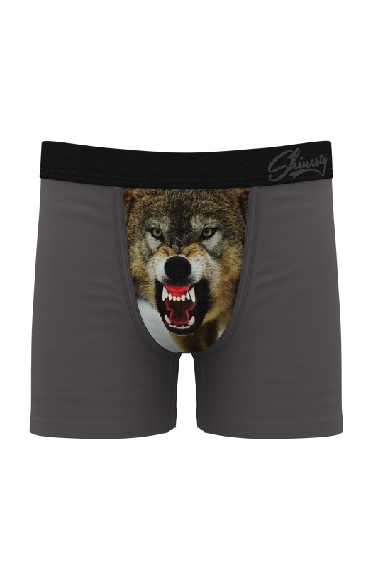 The Canines | Father and Son Boxer 2 Pack