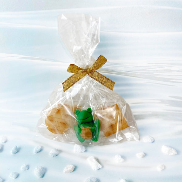 Passover marzipan treat bag with frogs and matzahs single bag
