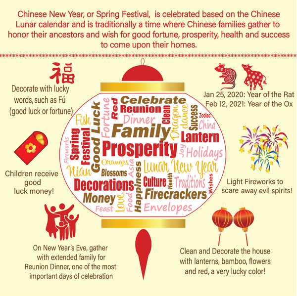 Chinese New Year Infographic for kids