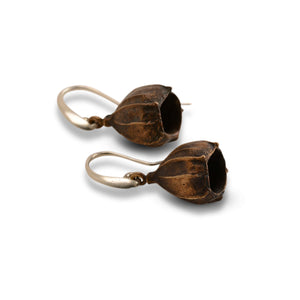 Gumnut Earrings Bronze