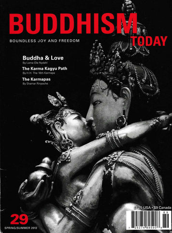 Buddhism today 29