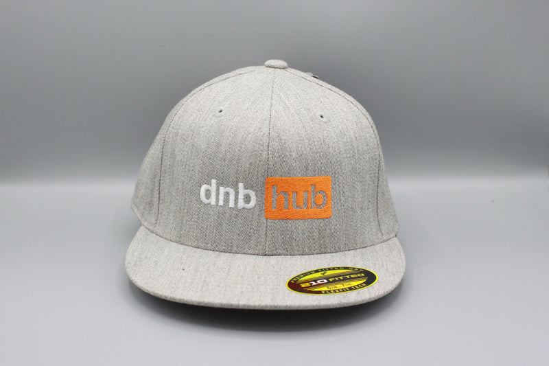 dnbhub Grey Flexfit Snap