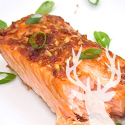 Gingered Salmon