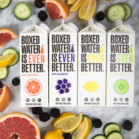 Boxed Water Fruit Flavor Variety Pack