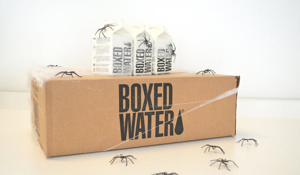 Boxed Water Spider Drinks Supplies