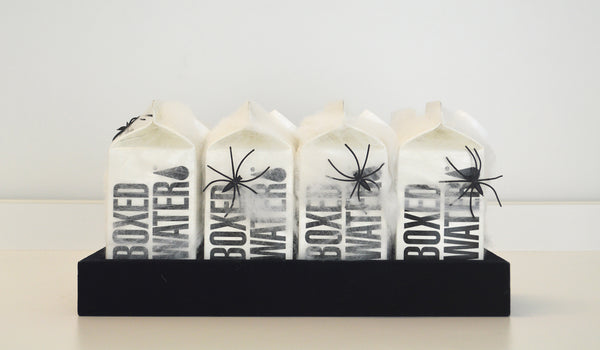 Boxed Water Spider Drinks Display