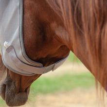 Load image into Gallery viewer, Cashel Fly Mask w/Long Nose