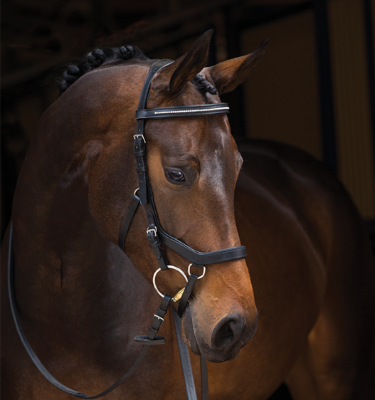 Rambo Micklem Diamante Competition Bridle with Reins