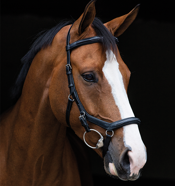 Rambo Micklem Deluxe Competition Bridle with Reins