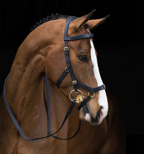 Rambo Micklem Multi-Bridle without Reins