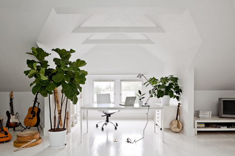 Houzz Feng Shui Office