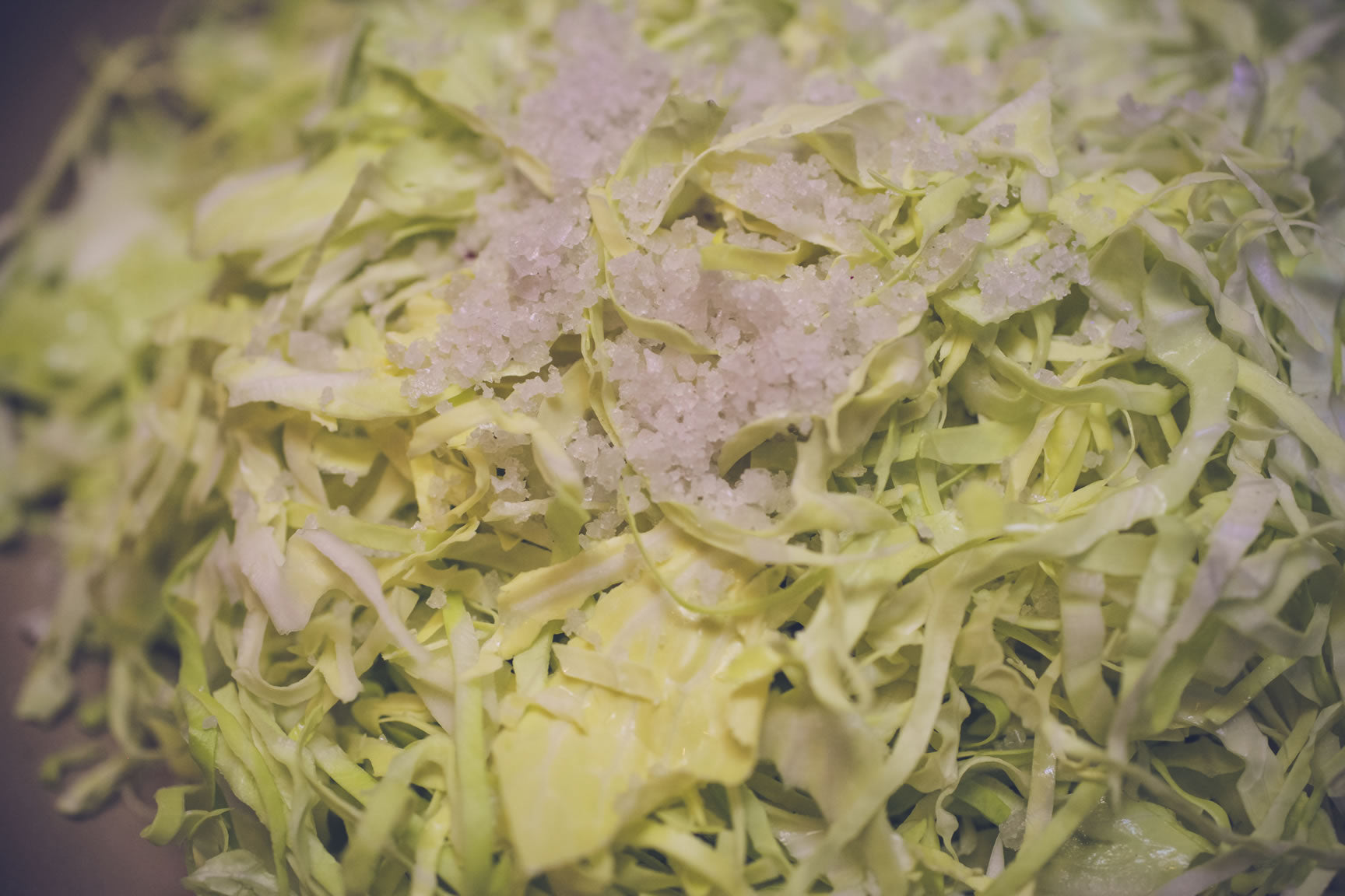 salting cabbage for kraut