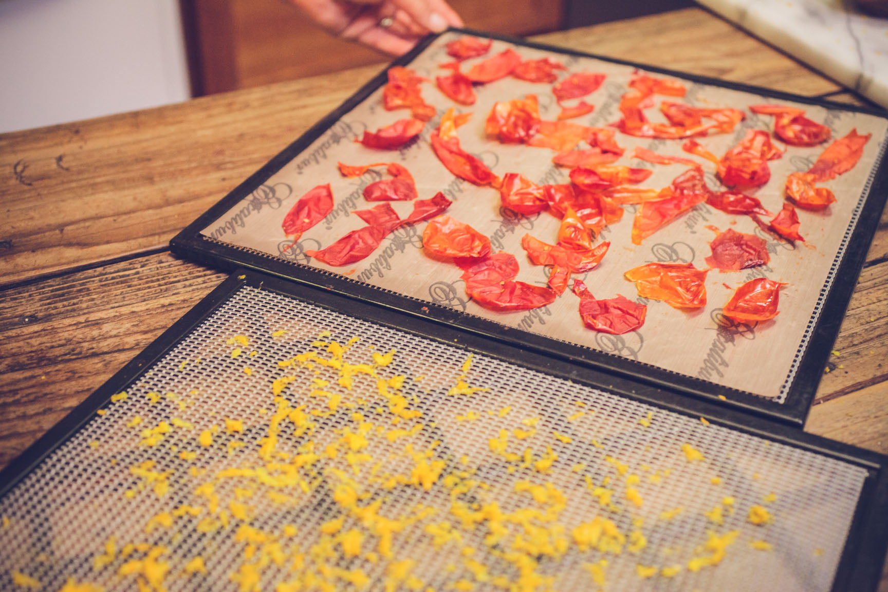arrange tomato skins on dehydrator sheets