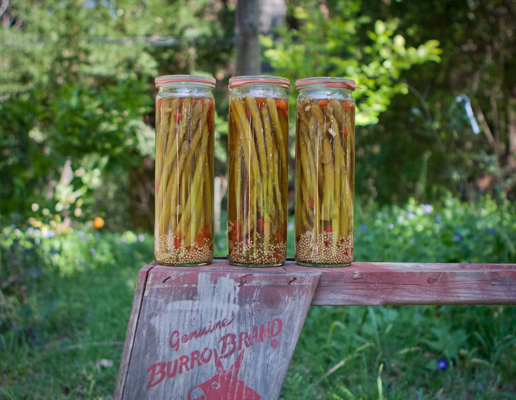 how to make pickled asparagus