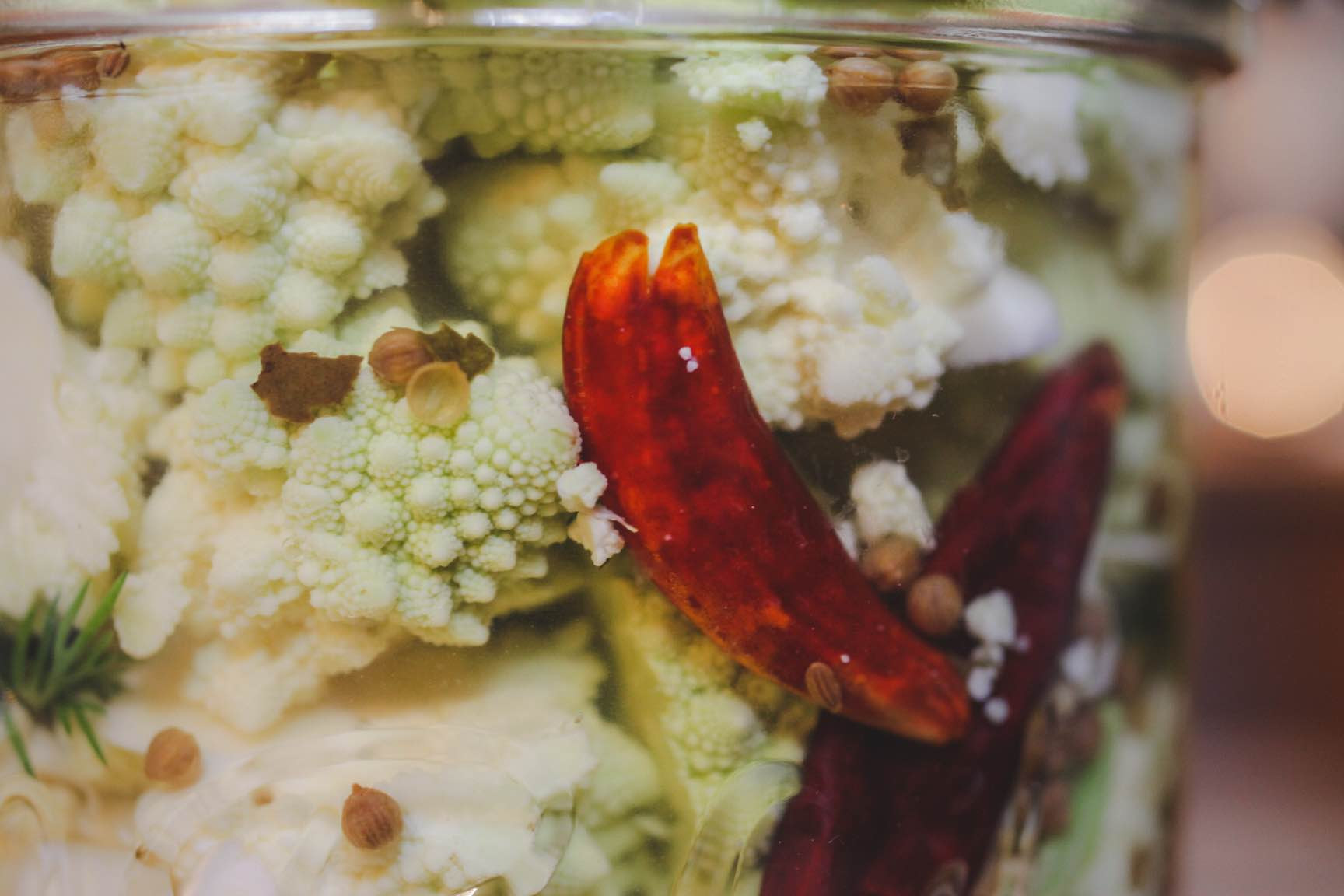 seasonal veggie refridgerator pickle recipe