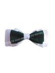 2 Color Ribbon Bows