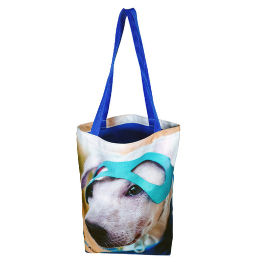 Medium Colorful Liner Tote