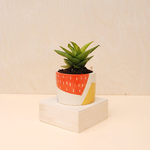 Pieces Planter
