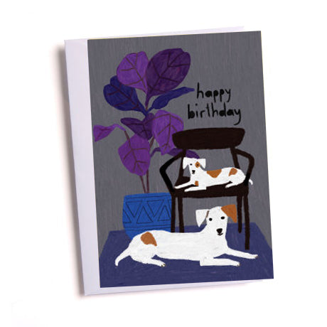 Contented Dogs Birthday Greetings Card