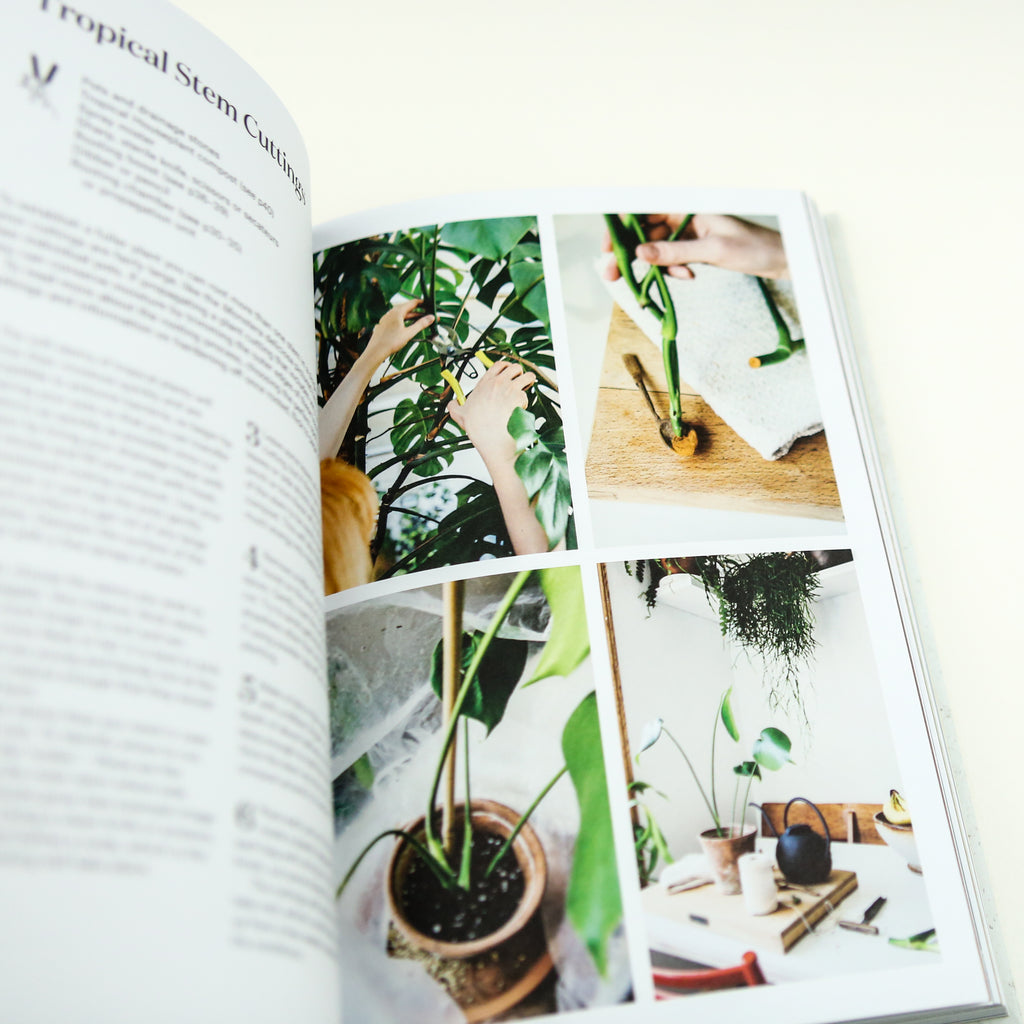 Root, Nurture, Grow Book: The Essential Guide to Propagating and Sharing Houseplants