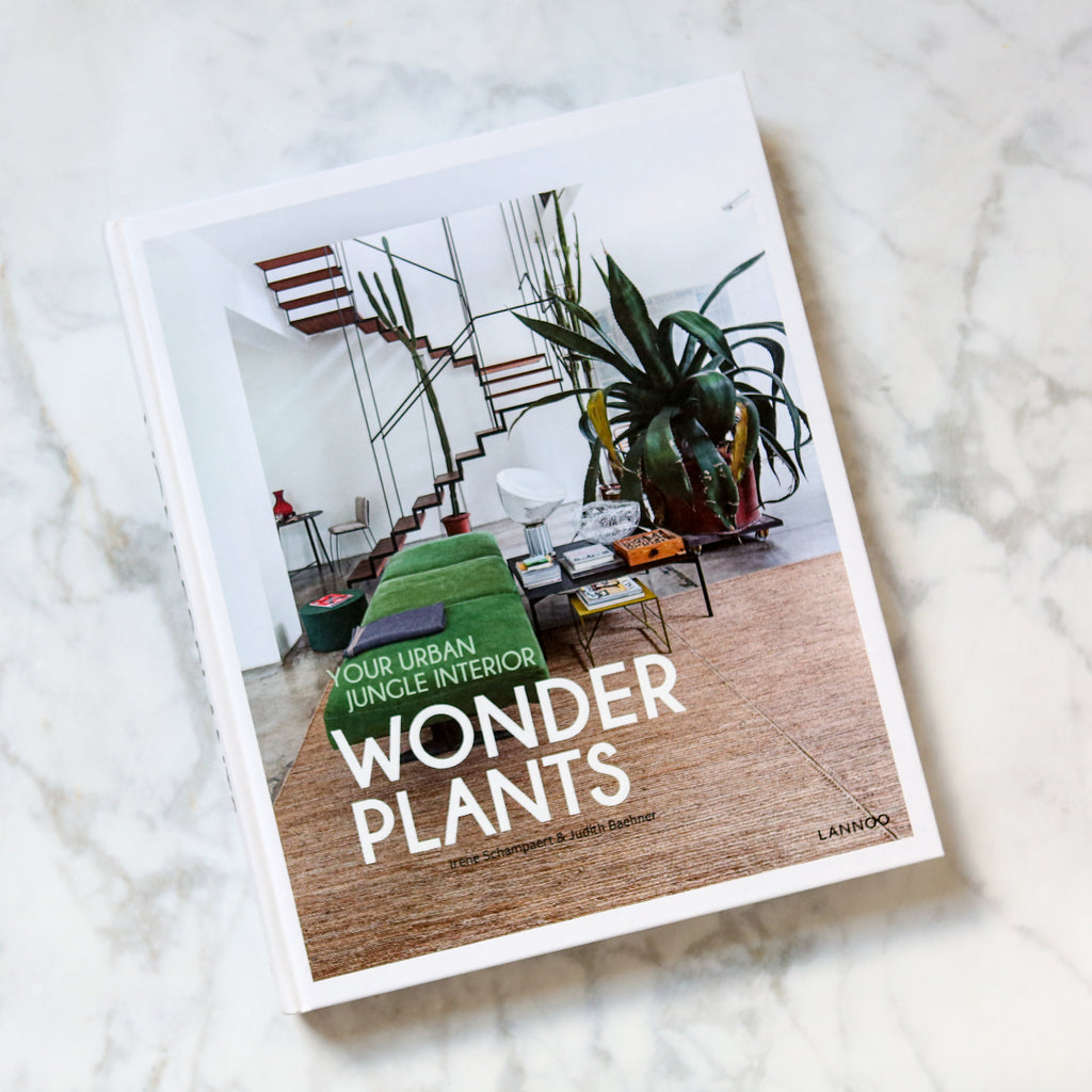 Wonder Plants - Your Urban Jungle Interior