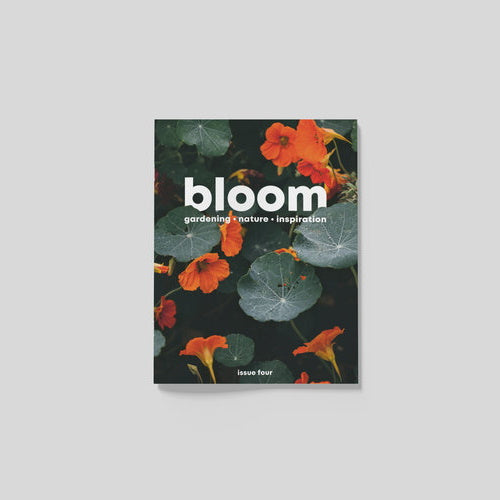 Bloom Magazine Issue 4