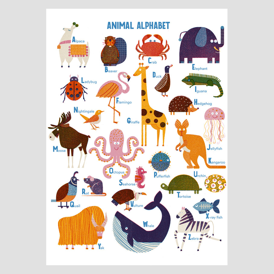 Animal Alphabet A3 Digital Print
