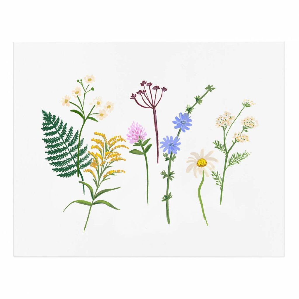 "Wildflowers Art Print by Rifle Paper Co. 8""x10"""