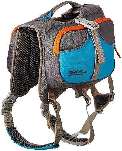 Cesar Millan Dog Backpack (Small)