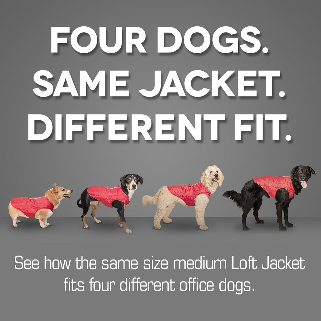 Kurgo Loft Jacket, Reversible Dog Coat, Dog Coat for Cold Weather, Water-Resistant Dog Jacket with Reflective Trim, Ink Blue, Large