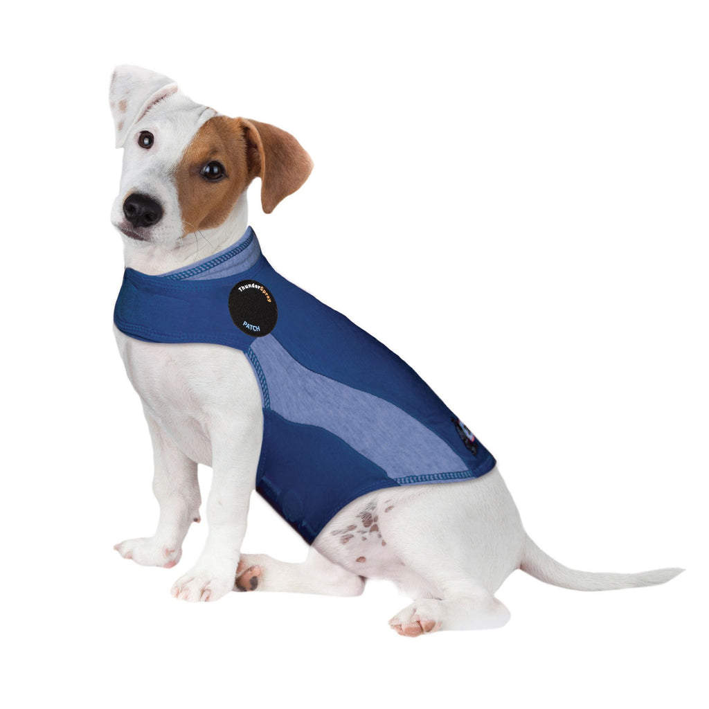 ThunderShirt Polo Dog Anxiety Jacket, Blue, Small