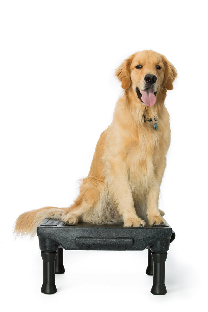 The KLIMBTM Dog Training Platform & Agility System (Black)
