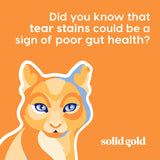 Solid Gold - Indigo Moon with All Natural Chicken & Egg  - Grain Free & Gluten Free - High Protein Holistic Dry Cat Food for All Life Stages - 12lb Bag