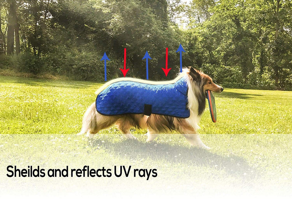 "Derby Originals Hydro Cooling Dog Jacket, Reflects Heat & Keeps Dogs Cool for up to 10 Hours (Royal Blue, 18"")"