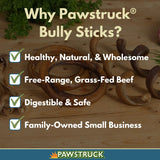 Bully Stick Rings for Dogs (10 Pack) - Natural Bulk Dog Dental Treats & Healthy Chew, Best Thick Low-Odor Pizzle Stix, Free Range & Grass Fed Beef