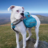 Kurgo Big Baxter Dog Backpack, Dog Saddlebag, Dog Pack, Adjustable Saddlebag for Hiking, Walking, Running, Camping, Coastal Blue