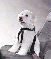 Small / Medium Adjustable Combo Harness