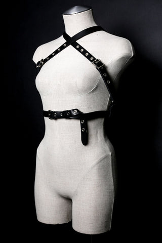 MAXX Grommeted Halter Harness