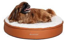 Load image into Gallery viewer, Icecoat orthopedic luxury dog bed for small dogs