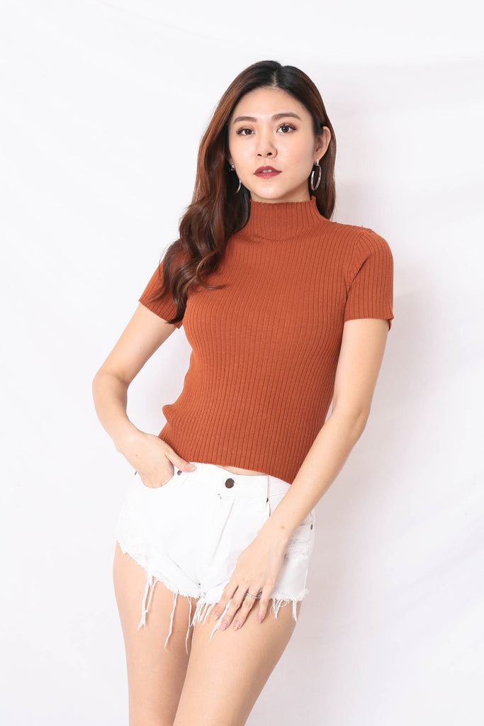RYLEE HIGH NECK SOFT KNIT TOP IN TERRACOTTA
