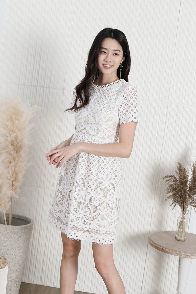 *TPZ* VICTORIAN EYELET LACE DRESS IN WHITE