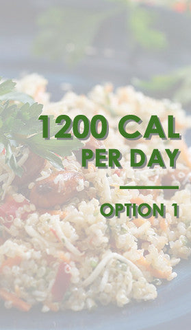 z 1200 CAL / DAY OPT #1