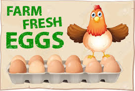 1 Dozen - Farm Fresh Eggs