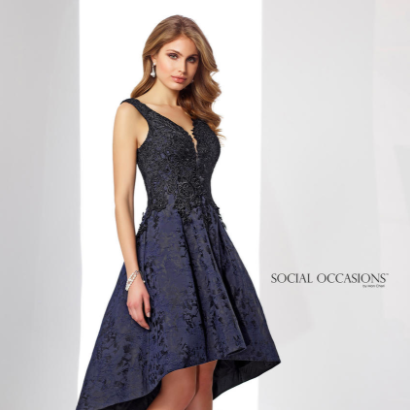 Sleeveless Lace Brocade Tea Length Dress