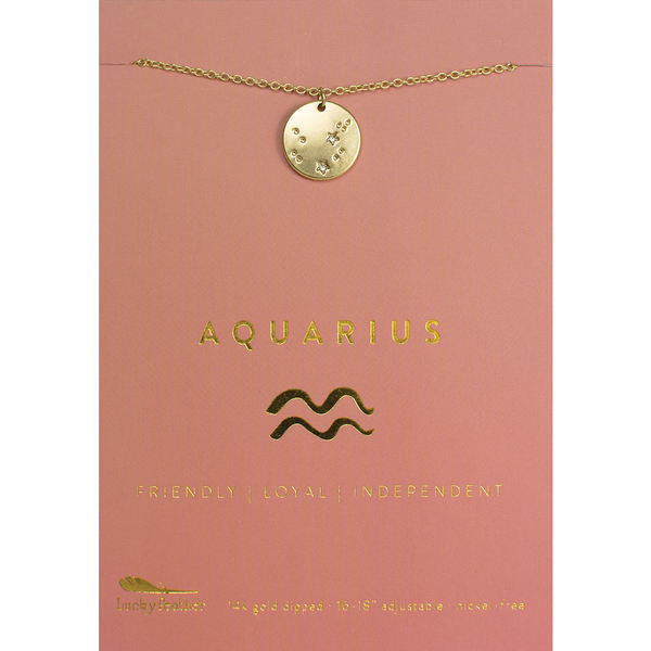 Lucky Feather Zodiac Necklace - Aquarius