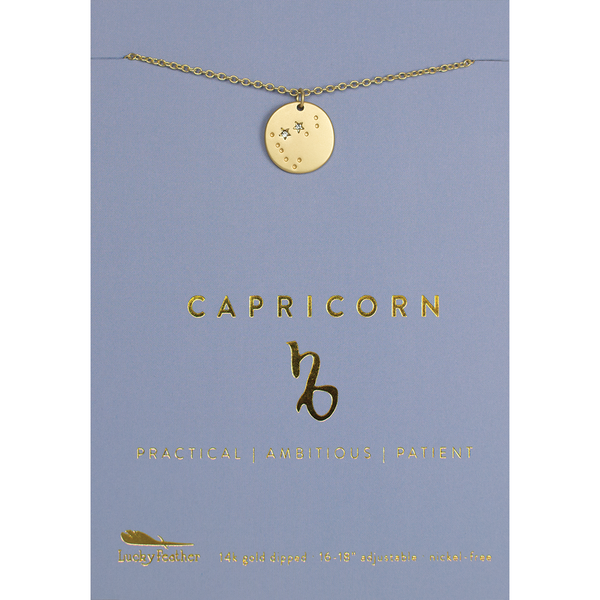 Lucky Feather Zodiac Necklace - Capricorn