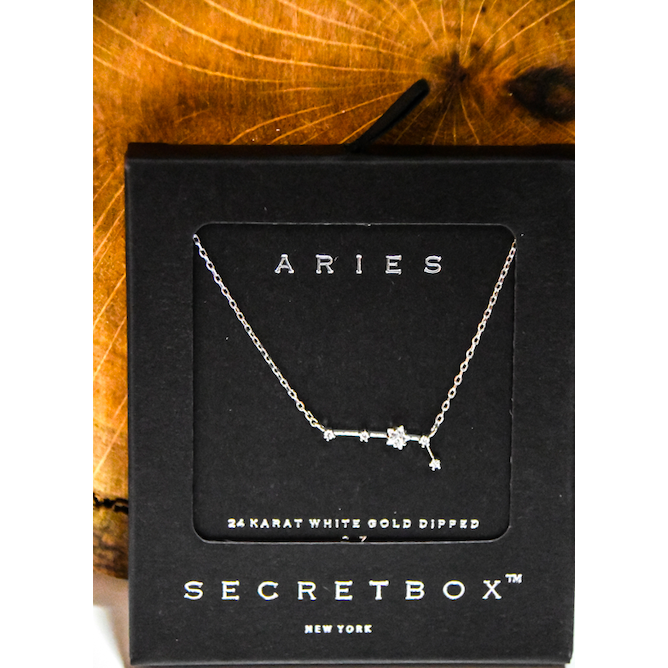 White Gold Zodiac Necklace