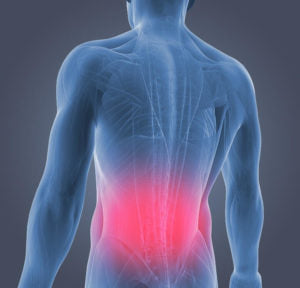 MUSCLE PAIN - Why So Common?