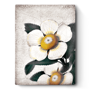 White Blossoms T487 Sid Dickens Memory Block