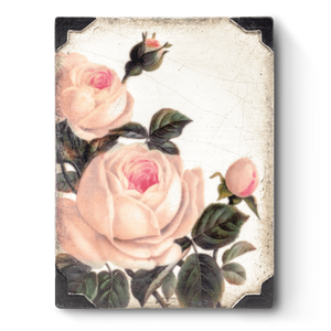 Gentle Rose T464 Sid Dickens Memory Block